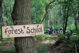 Forest Schools Saturdays For Parents